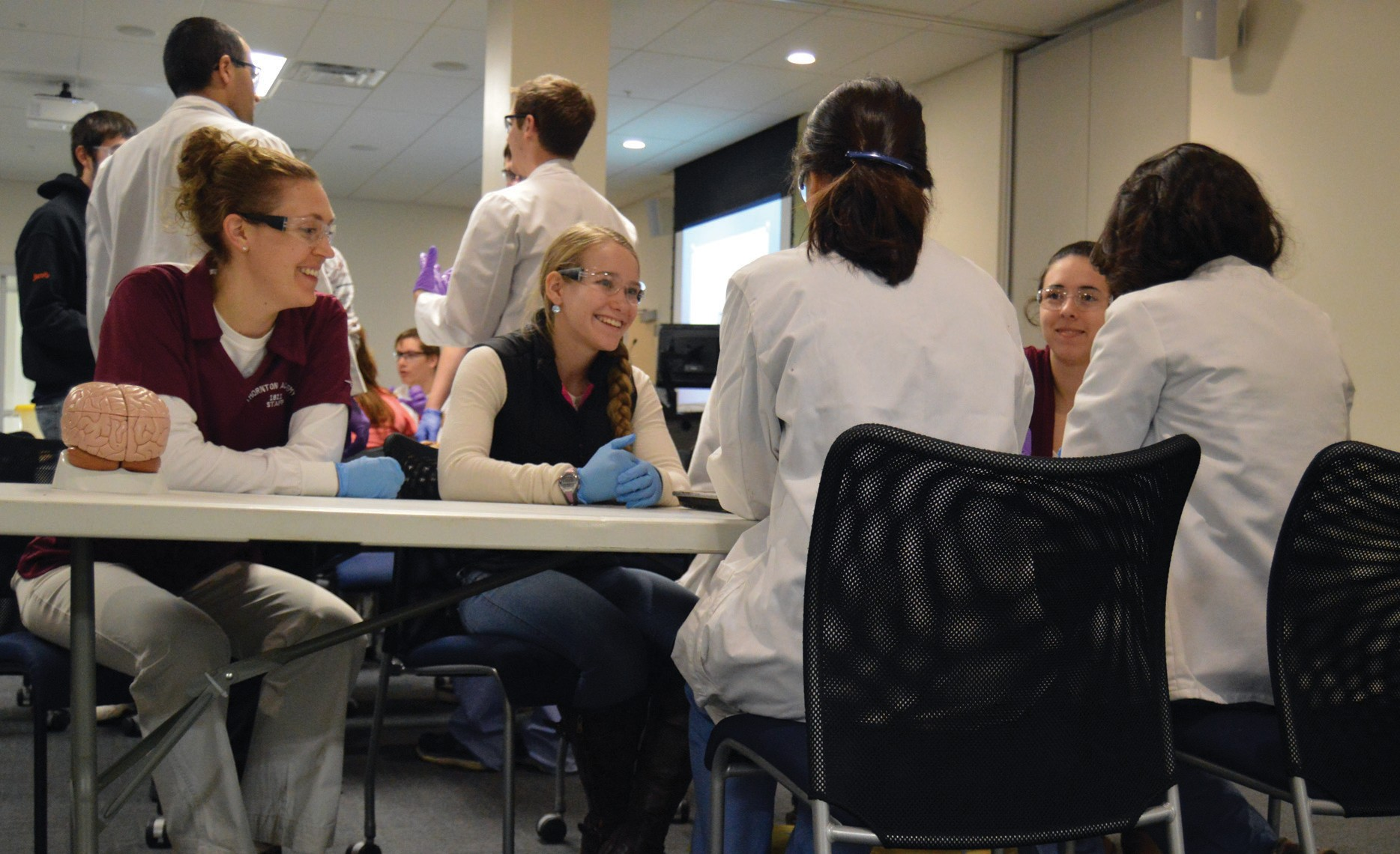 To prepare for the southern Maine Regional Brain Bee Competition, volunteer college undergraduates enrolled in the University of New England's College of Osteopathic Medicine program worked in small groups to prepare high school students for the competition on UNE's Biddeford campus Tuesday..