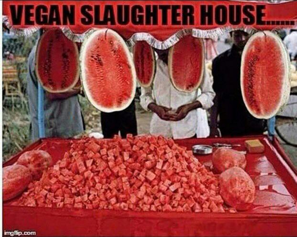 "A meme shared on the Vegan Humor Facebook page of a ""slaughterhouse"" in an all-veg world."