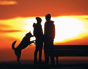 A COUPLE PAUSES to take in the view of a colorful sunset while walking their dog in a park on Thursday in Portland. Parts of Maine have been in the midst of a January thaw with daytime temperatures well above freezing. To see if the trend continues, read the latest weather forecast on page A14.