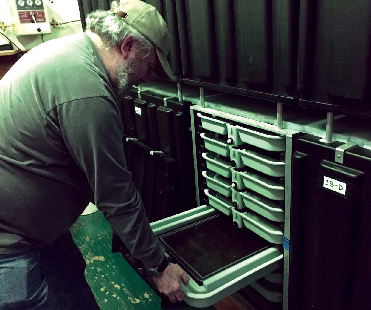 Saco Salmon Restoration Alliance President Rick LaRiviere pulls out a tray of salmon fry in an incubator at the organization's Biddeford hatchery.