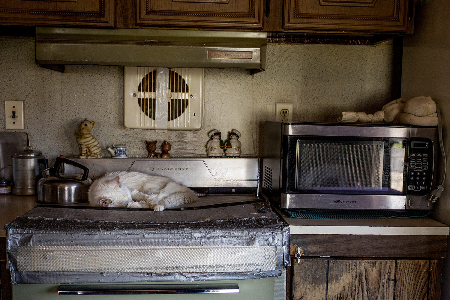 A cat sleeps on a stove top in a small trailer in Dixfield. Gabe Souza/Staff Photographer
