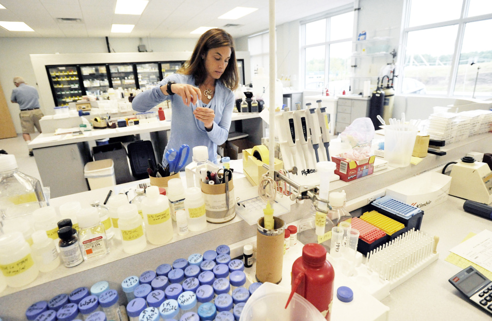 """Stacy Cimino works to fill orders at ViroStat's lab. Doug McAllister, the company's president and founder, said that becoming the provider of antibodies for new Zika testing is """"a race to be first and a race to see who has the best-quality test."""""""