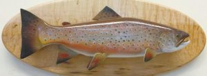 """""""BROWN TROUT"""" BY LYNDON BABKIRK"""