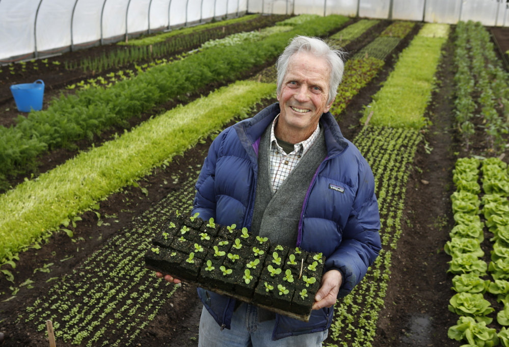 """In the three dozen letters that make up """"Letters to a Young Farmer,"""" some of the most lauded advocates for sustainable living and eating offer advice to the next generation."""