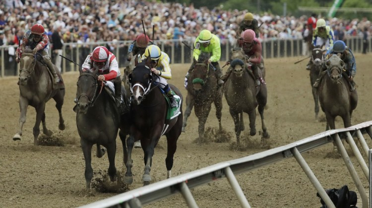Image Result For Preakness Home Of The Nd Preakness Stakes