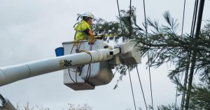 CENTRAL MAINE POWER worker Gary Robinson cuts a limb away from wires on Middlesex Road in Topsham on Monday.