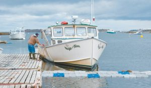 A LOBSTERMAN at the Harpswell wharf, as seen this past summer. A Harpswell state legislator is working on a bill that would allow terminally ill lobstermen to be granted a waiver for a family member to work on their lobstering license.