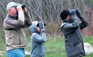 FOUR CONSERVATION ORGANIZATIONS in the Midcoast offer opportunities to get outdoors and learn about birds this spring.