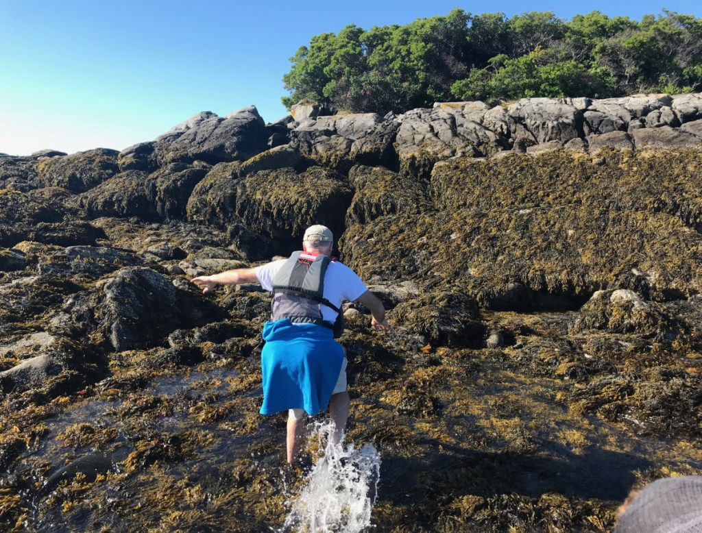 Chuck Radis splashes onto seaweed-covered ledges at low tide on College Island, on the tip of Long Island in Casco Bay. Visiting remote islands on the Maine Island Trail in a small boat often means scrambling up slippery rocks.