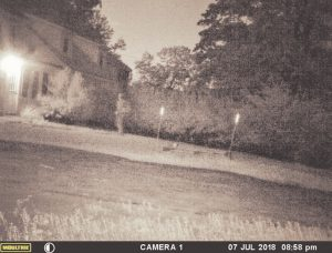 THIS LIGHTENED IMAGE was caught on Tia Wilson's motion-triggered game camera on Saturday night outside her Durham home. It appears to show a man with a rucksack standing near her front door. He is in one frame, but missing from the next frame taken by the camera 10 seconds later. To see the crisp image, go to sunjournal.com. PHOTO COURTESY OF TIA WILSON VIA SUN JOURNAL