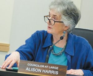 BRUNSWICK TOWN COUNCILOR Alison Harris, a member of the Finance Committee, talks about the committee's thought process behind a proposed property tax assistance program on Monday. DARCIE MOORE / THE TIMES RECORD