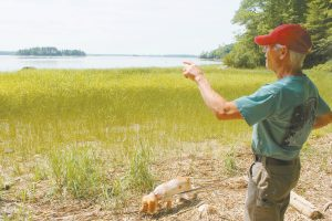 BRAD MCFADDEN and his English cocker spaniel Simmy explore the property on Merrymeeting Bay where his seventh great-grandmother settled in 1718. She came in the first wave of Scots-Irish migrants to Maine. EMILY COHEN / THE TIMES RECORD