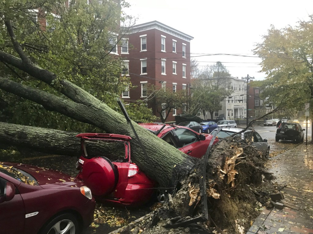 An uprooted tree fell on a vehicle parked along Mellen Street in Portland during the late October windstorm, which cut power to about 557,000 customers in the state.
