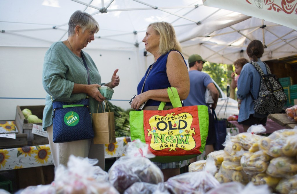 """Independent Terry Hayes, left, talks with Carol Schiller of Portland at the Deering Oaks farmers market on Sept. 15. Hayes is state treasurer and a former Democrat. She wants to change the political culture in Augusta, where she says partisanship has """"blossomed."""""""