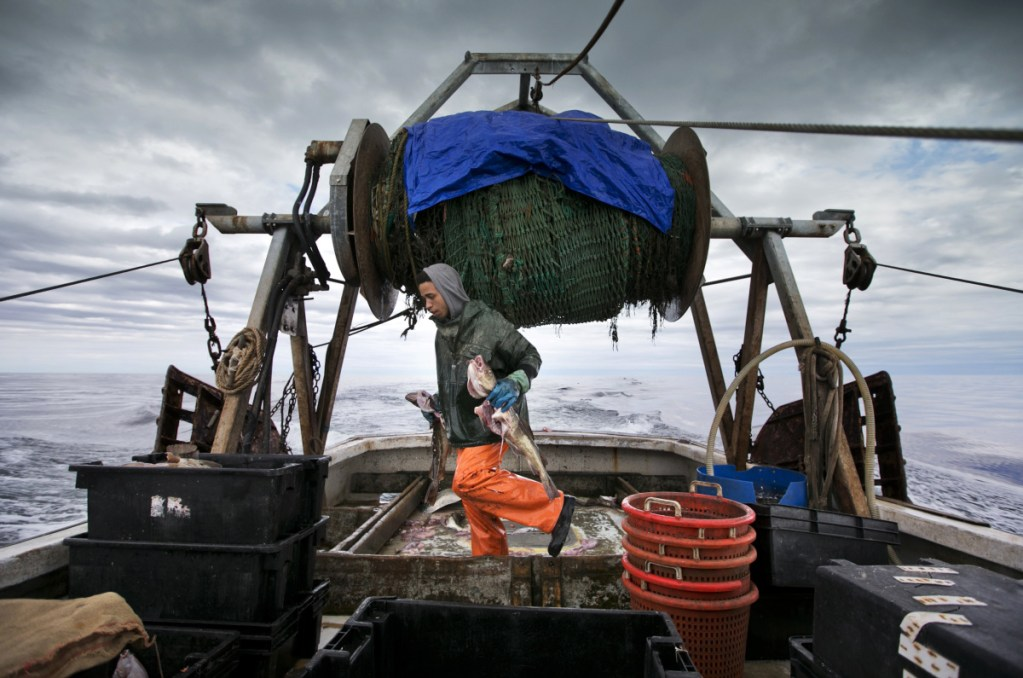 U S  fishermen lose quota in new fishing pact with Canada