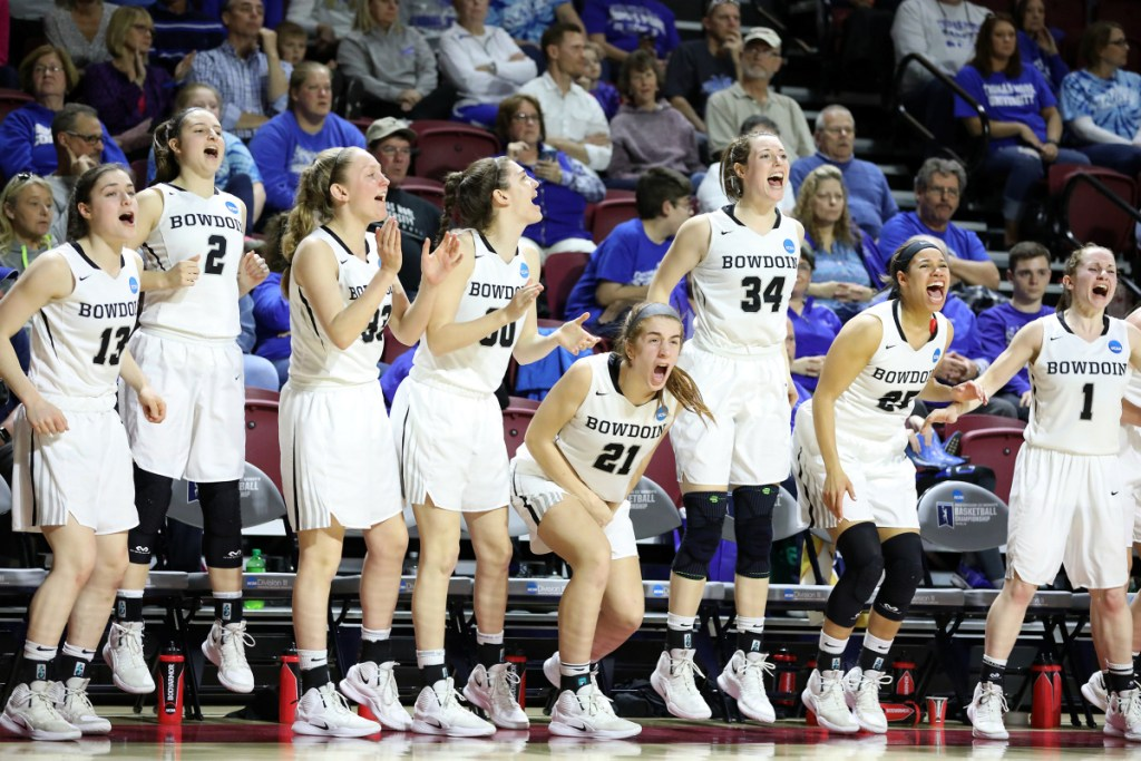 Bowdoin players celebrate as the Polar Bears take control in the closing minutes on their way to a 71-60 win over St. Thomas in an NCAA Division III women's basketball semifinal Friday in Salem, Va.