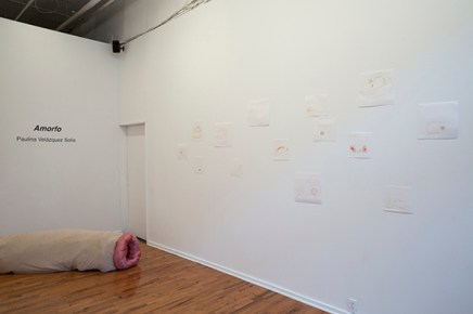 Amorfo, installation view. Photo by Lauren Castellana