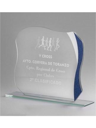 1359-Cristal-Economico-Trofeo-Placa-Reconocimiento-Homenaje