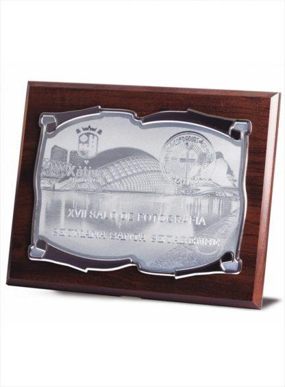 1725-Placa-Economico-Trofeo-Reconocimiento-Homenaje-Barata