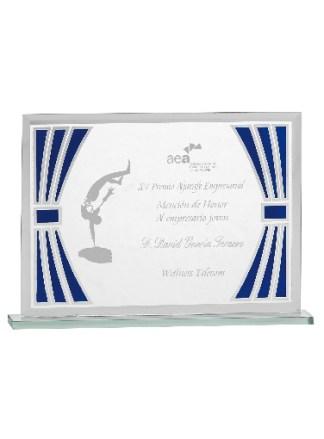 4522-Placas-Homenaje-Reconocimiento-Bodas-Eventos-Especiales-Tenis