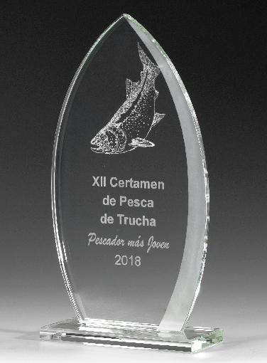 9329-Cristal-Economico-Trofeo-Placa-Reconocimiento-Homenaje