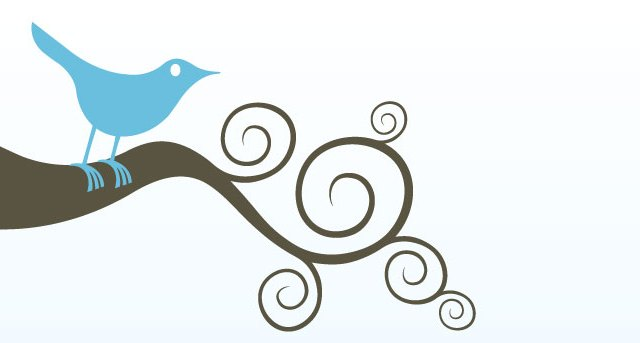 Twitter (C) Claudio Toledo CC BY 2.0 https://creativecommons.org/licenses/by/2.0/
