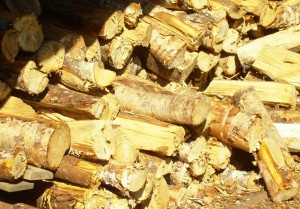Firewood - always use birch when you can, it doesn't send sparks around like pine does!