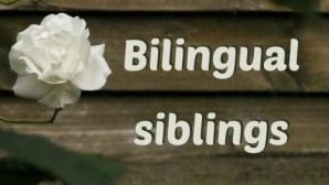 Bilingual siblings