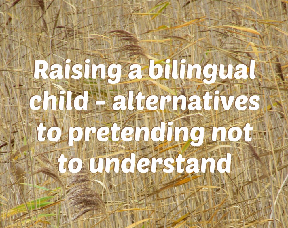 Raising a bilingual child - alternatives to pretending not to understand PIC