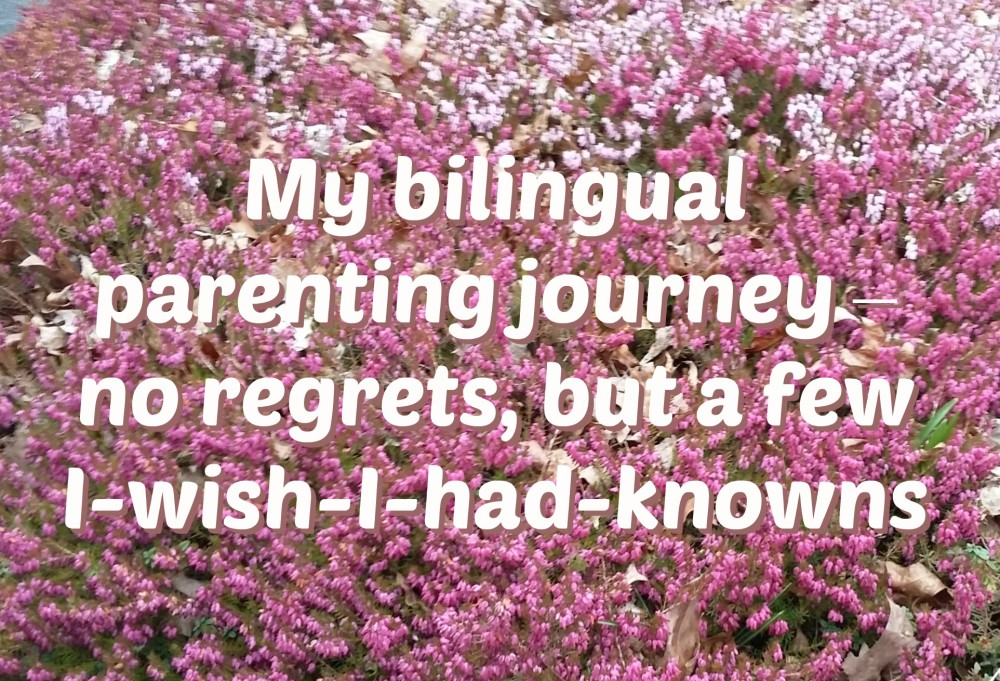 My bilingual parenting journey