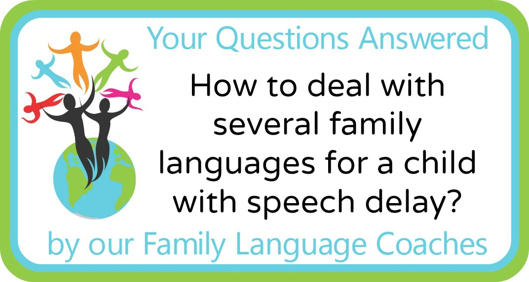 How to deal with several family languages for a child with speech delay?