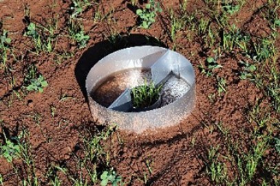A cylindrical aluminum pan collecting water and soil particles in a field.