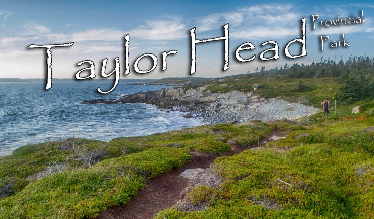 Taylor Head Provincial Park Photos