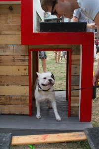 A dog and owner try out one of the custom doghouses. Photo by Rebecca Wright