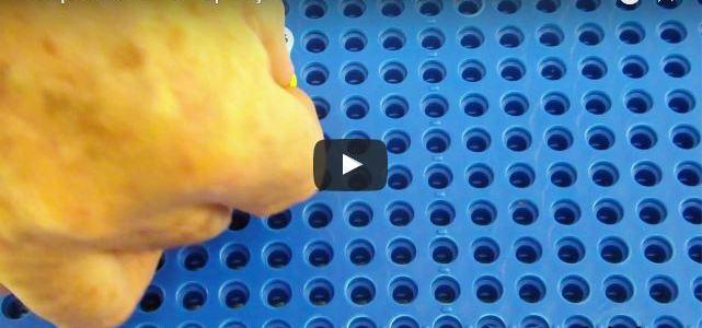 Operações com Pinos em Braille