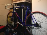 New Vittoria Rubino tyres and SKS Bluemels fenders