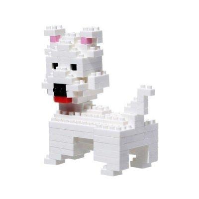 BRI-perro