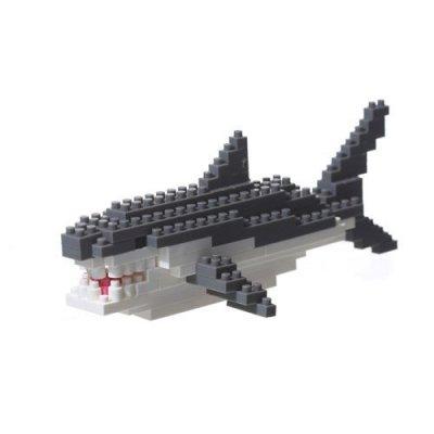 BRI-tiburon