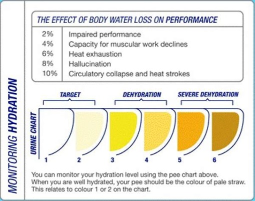 ms_blog_hydration_5