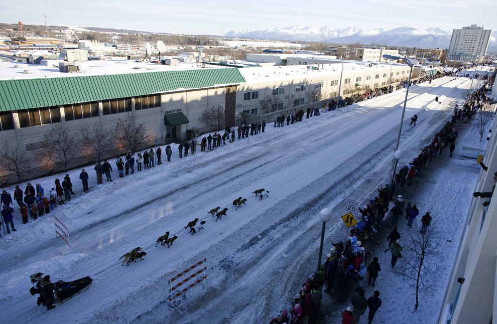 Ceremonial start of the 2009 Iditarod Race in downtown Anchorage, Alaska