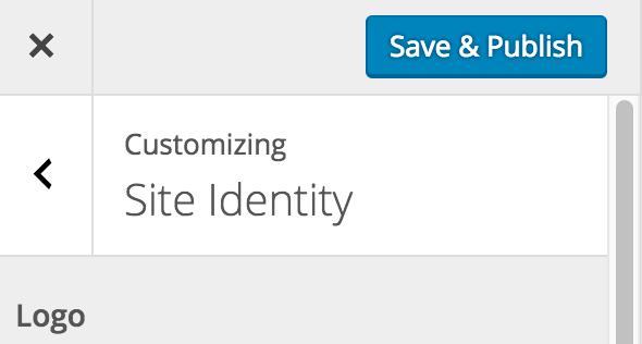 Save & Publish Logo