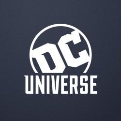 DC-Universe-wide-logo