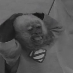 Adventures of Superman - The Monkey Mystery