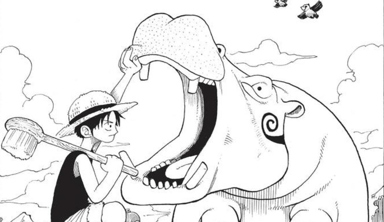One Piece Banner 3