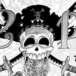 One Piece Vol 11 Banner