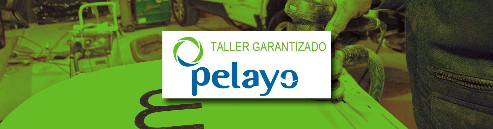 Talleres de chapa y pintura PELAYO - Palma de Mallorca