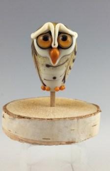 Concerned Owl