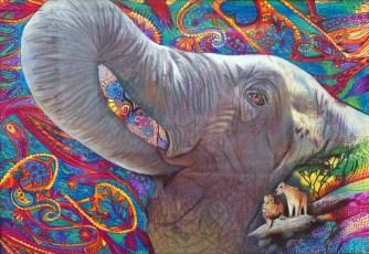Elephant Habitat