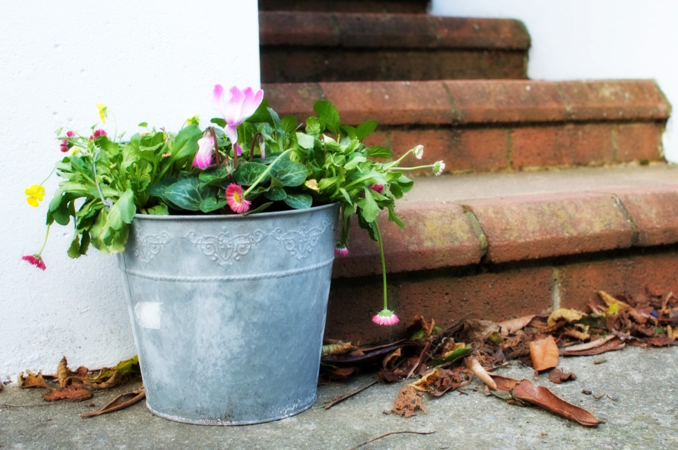 When adding a simple planter makes all the difference, click here for my suns day photo