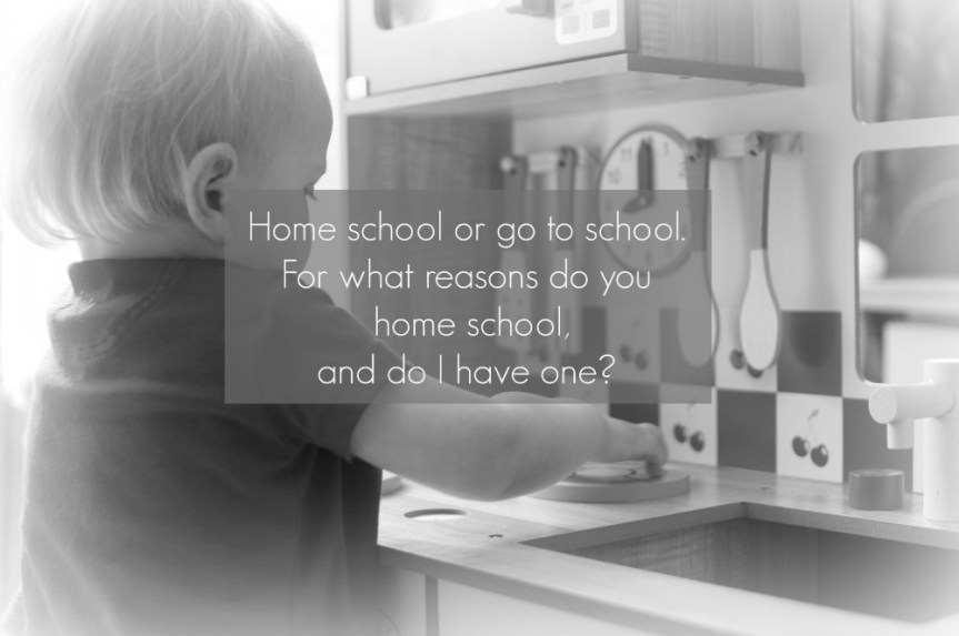 Homeschool or Go To School, What Are My Options?